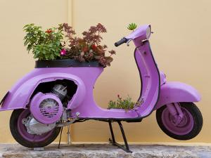 Scooter Flower Display, Symi Island, Dodecanese Islands, Greece by Peter Adams