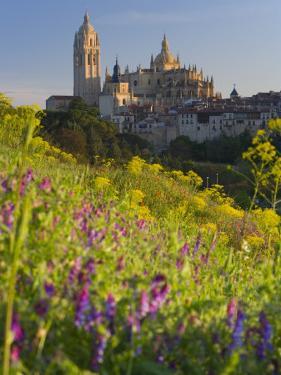 Segovia, Castilla Y Leon, Spain by Peter Adams