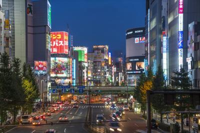 Shinjuku district at night, Tokyo, Japan by Peter Adams