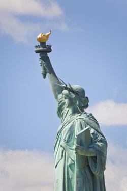 Statue of Liberty, New York, USA by Peter Adams
