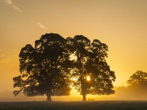 Sunrise, Usk Valley, South Wales, UK by Peter Adams