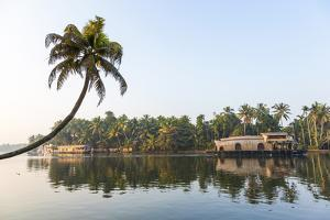 Traditional Houseboat, Kerala Backwaters, Alleppey, Kerala, India by Peter Adams