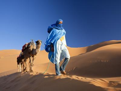 Tuareg Man Leading Camel Train, Erg Chebbi, Sahara Desert, Morocco by Peter Adams
