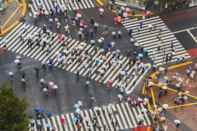 View of Shibuya Crossing, one of the busiest crossings in the world, Tokyo, Japan by Peter Adams