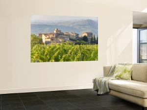 Vineyard and Village, Volpaia, Tuscany, Italy by Peter Adams