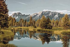 Wilderness I by Peter Adams