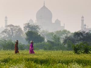 Women Carrying Water Pots, Taj Mahal, Agra, India by Peter Adams
