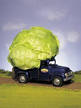 Lettuce in Bed of Miniature Truck by Peter Ardito