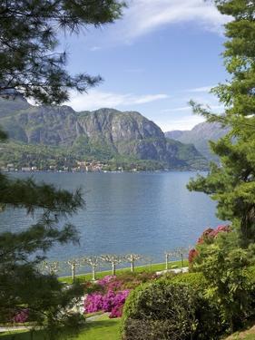 Gardens of Villa Melzi, Bellagio, Lake Como, Lombardy, Italian Lakes, Italy, Europe by Peter Barritt