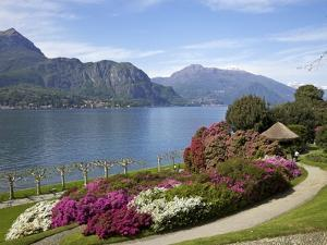 Gardens of Villa Melzi, Bellagio, Lake Como, Lombardy, Italian Lakes, Italy, Europe by Peter Barritt