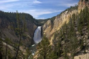 Lower Falls from Red Rock Point, Yellowstone Nat'l Pk, UNESCO Site, Wyoming, USA by Peter Barritt
