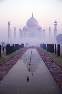 Taj Mahal at Dawn, UNESCO World Heritage Site, Agra, Uttar Pradesh, India, Asia by Peter Barritt