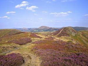 Views over Caradoc, Lawley and the Wrekin from the Long Mynd, Church Stretton Hills, Shropshire, En by Peter Barritt