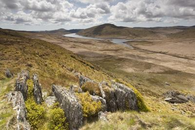 View over Upland Moorland Landscape, Cambrian Mountains, Ceredigion, Wales, May