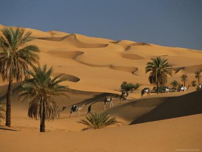 Caravan Travels Amongst the Dunes and Palm Trees of the Sahara by Peter Carsten