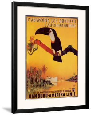 L'Amazone les Antilles by Peter Fussey