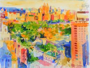 Central Park from The Carlyle by Peter Graham