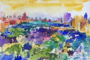 Central Park, New York, 2011 by Peter Graham