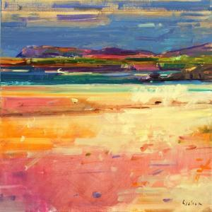 Tangusdale, Barra, 2012 by Peter Graham