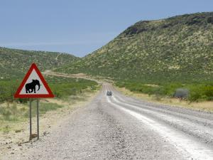Elephant Sign Along Dirt Road, Namibia, Africa by Peter Groenendijk