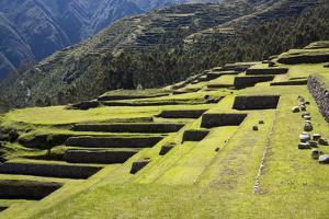 Inca Terracing, Chinchero, Peru, South America by Peter Groenendijk