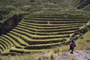 Inca Terracing in the Sacred Valley, Pissac, Peru, South America by Peter Groenendijk