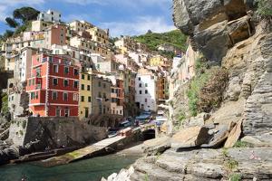 Manarola, Cinque Terre, UNESCO World Heritage Site, Liguria, Italy, Europe by Peter Groenendijk