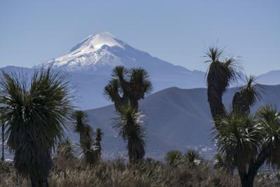 Pico de Orizaba, Mexico, North America by Peter Groenendijk