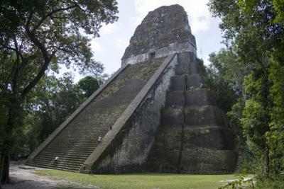Tikal Temple 5, pre-Colombian Maya civilisation, Tikal, UNESCO World Heritage Site, Guatemala by Peter Groenendijk