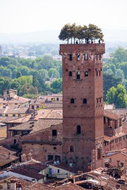 Torre Guinigi as Seen from Torre Delle Ore, Lucca, Tuscany, Italy, Europe by Peter Groenendijk