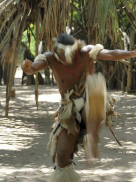 Zulu Tribal Dance Group, Dumazula Cultural Village, South Africa, Africa by Peter Groenendijk