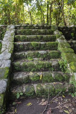 Izapa Ruins, Tapachula, Chiapas, Mexico by Peter Hawkins