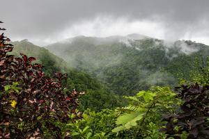 Puntarenas, Costa Rica by Peter Hawkins