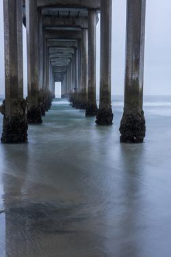USA, California, La Jolla, Scripps Pier by Peter Hawkins