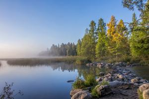 USA, Minnesota, Itasca State Park by Peter Hawkins
