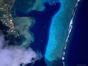 Aerial View of Coral Reef, French Polynesia by Peter Hendrie