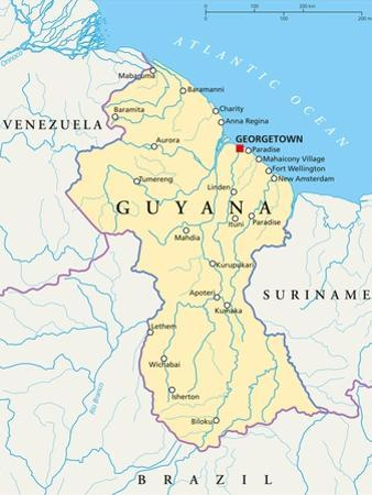 Guyana Political Map by Peter Hermes Furian