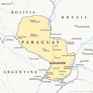 Paraguay Political Map by Peter Hermes Furian