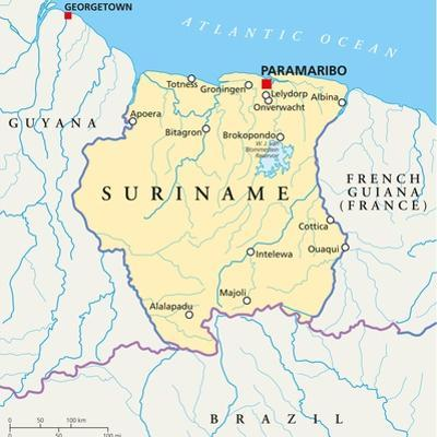 Suriname Political Map by Peter Hermes Furian