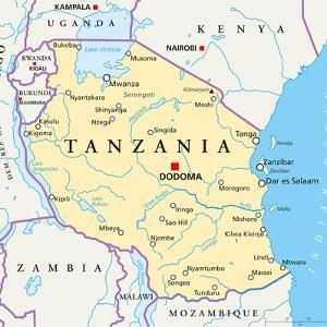 Tanzania Political Map by Peter Hermes Furian
