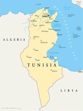 Tunisia Political Map by Peter Hermes Furian