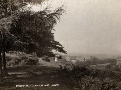 Hothfield Common and West Ashford Workhouse, Kent