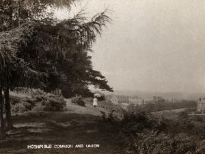 Hothfield Common and West Ashford Workhouse, Kent by Peter Higginbotham