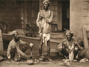 Three Samp Wallahs, or Snake Charmers by Peter Higginbotham