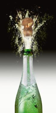Splashing Cork I by Peter Hillert
