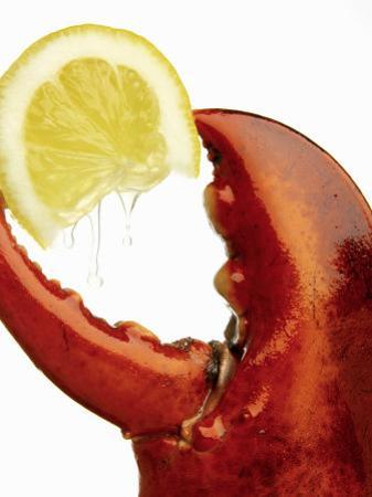 A Wedge of Lemon in a Lobster Claw by Peter Howard Smith