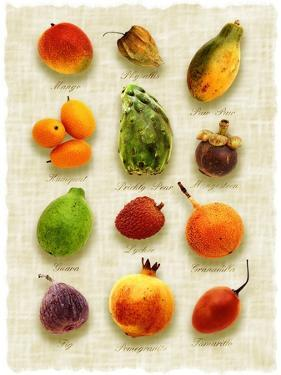Exotic Fruit in Style of a Painting by Peter Howard Smith