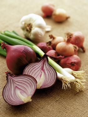 Various Onion Family Vegetables by Peter Howard Smith