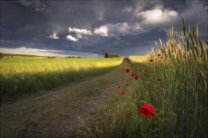 Before the Storm by Peter Lundqvist