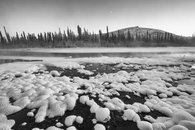 A Boreal Forest and Ogilvie River with Snow by Peter Mather